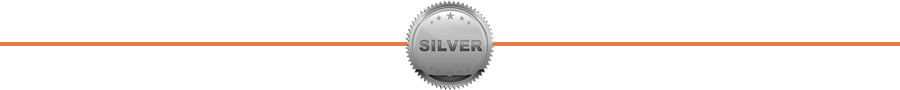 Our Silver Sponsor Level